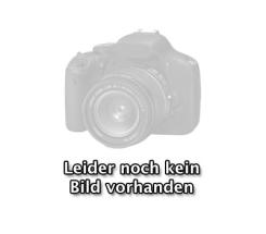 Apple Watch Series 6 GPS + Cellular mit 40mm oder 44mm, Titangehäuse Space Schwarz Milanaise Armband leasen